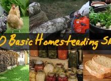 20 Homesteading Skills