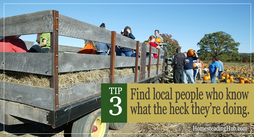 TIP 3 For Starting Your Homestead