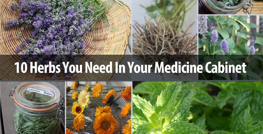 YOUR MEDICINE CABINET NEEDS TO BE STOCKED WITH THESE 10 HERBS!