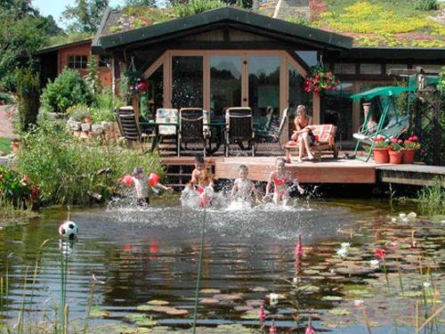 Natural Swimming Pool 4