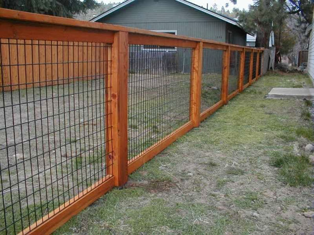 inexpensive fence ideas_2