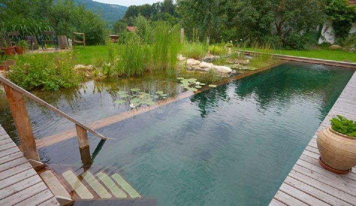 Natural Pool 1