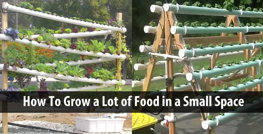 Grow A Lot Of Food In A Small Space 2 Diy Hydroponic