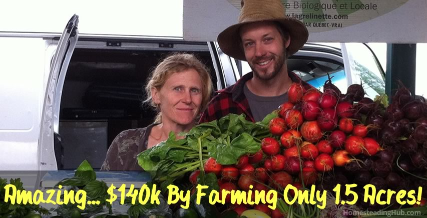 Earn $140k Farming 1.5 Acres