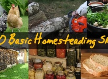 20 Homesteading Skills